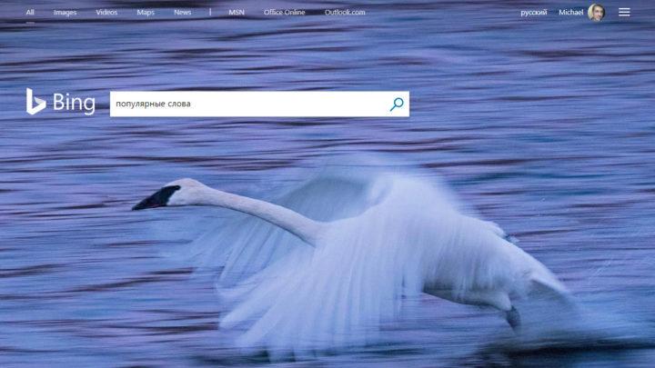 Занятный пример на PowerShell — генерируем слова и проверяем их популярность в Bing